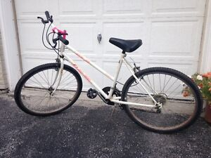 ATB-12 All Pro Road Bike - Gently Used