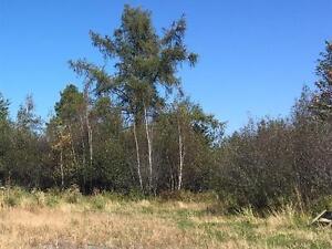 terre à bois, Rg St-Georges, Ange-Gardien (dc)