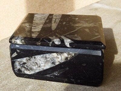 "Orthoceras & Ammonite Fossil Black Marble Stone Lidded Box Morocco 7.25"" Across"