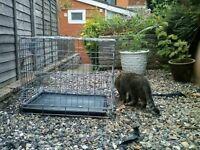Dog crate SAVIC (40x61x51 cm) £20