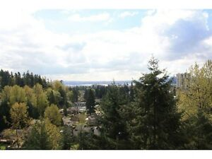 North Vancouver View Apartments from $419,900