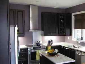 Brand new flawless cabinet painting at affordable prices.