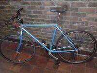 FULL SERVICE Men Women CUSTOM Vintage RALEIGH PIONEER Road Racer Hybrid Bike EXCELLENT CONDITION