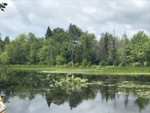 11.91 Acres Vacant Land With Private Water Front Lot For Sell!!!
