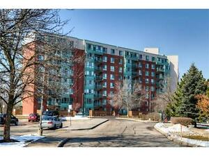 Beautiful,lake view condo with over1100 square feet, in Waterloo