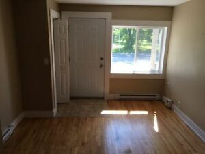 Bright Bachelor on Cliffe St $550! Nov 1st
