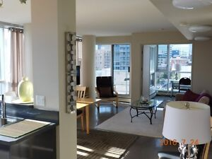 """Fully Furnished 934 square foot Condo Downtown """"Chocolate Condo"""""""