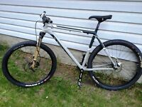 Trek Rig 29er, Single Speed, hydraulic disc brakes, Extra Large