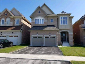 Bowmanville 4 bedroom main and upper level home for rent