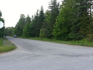 4.7 ACRES IN THE HAMLET OF ROSEDALE Kawartha Lakes Peterborough Area image 2