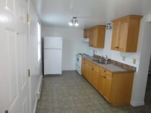 Newly Renovated 2 Bedroom Apartment Available December 1st!