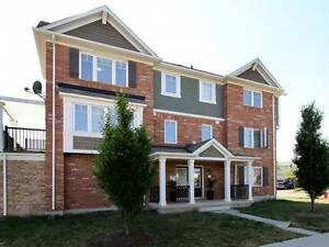 NEWER freehold townhouse.Creditview/bovaird