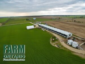 Unique Opportunity to Purchase Poultry Farm with/without Quota!