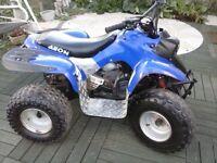 aeon quad 110 cc 2 stroke