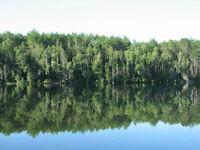 Clark Lake Estate Lot 200ft Waterfront-10 Acres -Otter Lake, QC