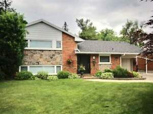 A Stunning Spacious Side Split Home In Desirable Location!