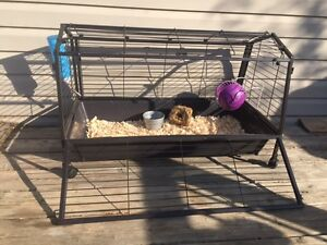 """""""BRAND NEW EXPENSIVE""""LARGE PET CAGE & ALL NEW ACCESSORIES NEEDED"""