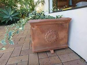 2 Large Square Terracotta Pots with Bouganvilleas Mermaid Waters Gold Coast City Preview