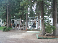 RECREATIONAL PROPERTY~TALL TIMBER LEISURE PARK~SUNDRE,ALBERTA