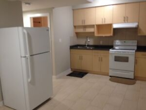 1 Bedroom Basement Suite- Includes Utilities and Laundry