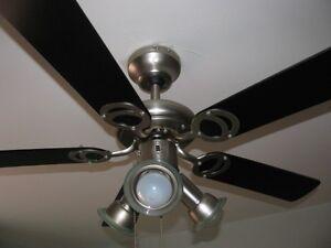 Ventilateur de plafond avec lumieres - Ceiling Fan with lights