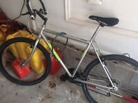 Raleigh 21 speed Shimano