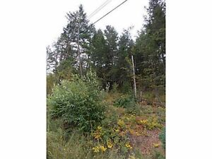 Rare Lake View Building Lot in Family Orientated Russet Bluff!! Williams Lake Cariboo Area image 5