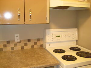 Old Strathcona XLG Bachelor Suite for rent for professional