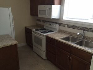 2 BEDROOM, newly renovated apartment NOW AVAILABLE