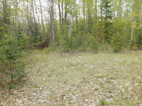 POWER OF SALE: 2.9 Acres Estate in HALIBURTON - Ref. no. 452B