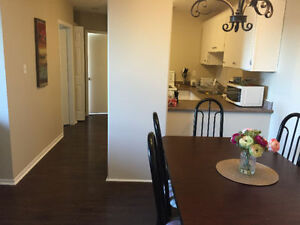 *ALL UTILITIES INCLUDED* Room for rent near avalon mall,MUN,HSC