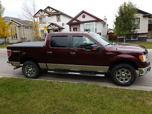 2009 Ford F-150 SuperCrew XLT 4x4 Pickup Truck