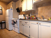 Executive one bedroom Downtown apt. Available Sept 1