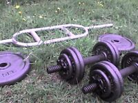 79 lb 37 kg Metal Dumbbell & Barbell Weights - Heathrow
