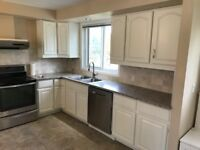 KITCHEN CABINET SPRAYING, REFACING. CALL ***1-519-949-2428***