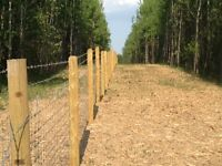 Mulching & Forestry Services
