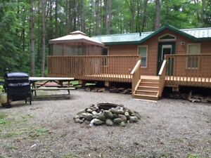 2 Bedroom Cabin Cottage in Muskoka  +Pool + Forest +Kahshe River