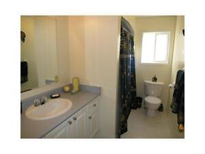 Single home in williaumsburg area.Available Oct 15, Wont last !! Kitchener / Waterloo Kitchener Area image 6