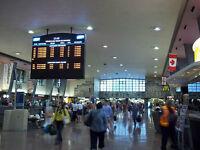 Central Train Station Transportation Service, 24/7, $20
