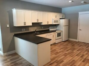 Basement Suite for Rent in The Meadows