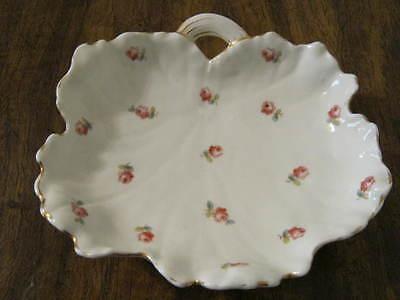 Antique China Shell Dish - C R Altrohla - Austria - Brown Shield - RARE