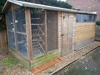 shed / bird aviary