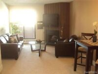 Modern, Clean & Quiet 1Br Apartment in City Park Avail. Aug 1st