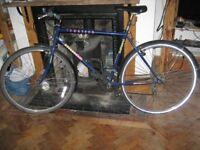Adults 10 speed bike