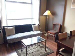 1 BEDROOM AND SOLARIUM(LIKE 2ND BDRM),FURNISHED,DOWNTOWN,NOV 1