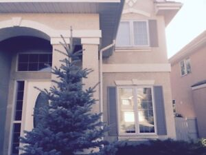 Beautiful detached 2 story house in SW Calgary