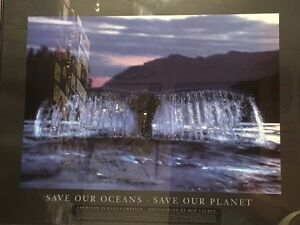 Framed Save the Planet Whale Print