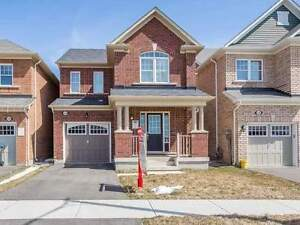 3 or 4 bedroom HOUSES for RENT in Brampton and Mississauga!
