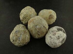 Whole TRANCAS GEODES 1/2 Lb Lots Natural Hollow Crystal Mineral Specimens