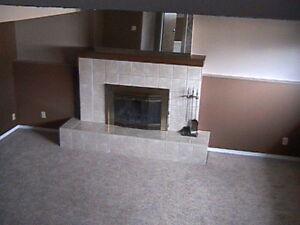 2 Bedroom, Northside - Large Bright Lower Level Suite